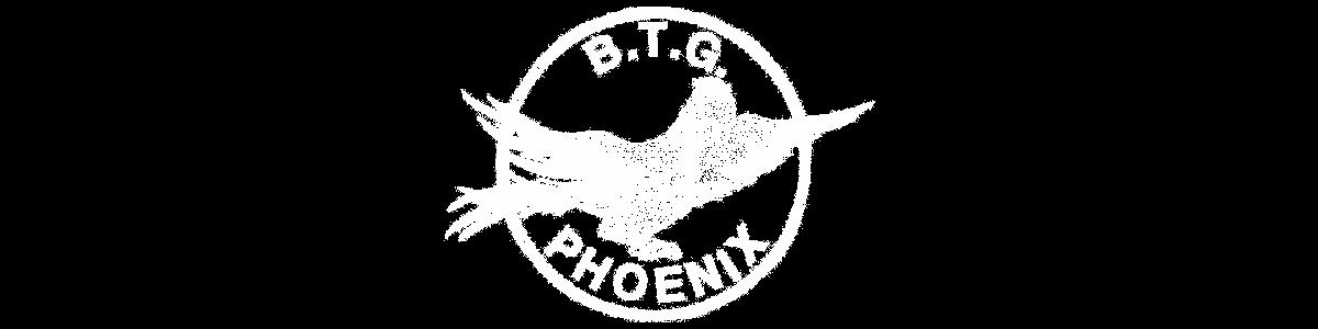 logo BTG Phoenix